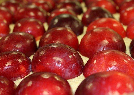 Our gluten-free plum slice