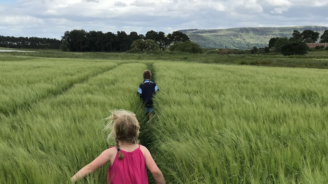Children running in the fields at Loch Leven's Larder